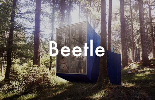 teaser cabanes beetle
